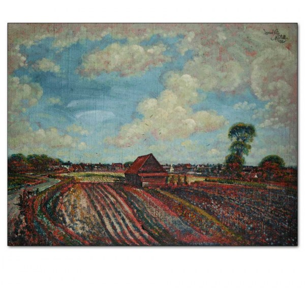 Flower Fields, Little Coggeshall